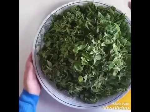 طريقة عمل فطائر الزعتر الاخضر الفلسطيني الجزء الاول Youtube Middle Eastern Recipes Savory Appetizer How To Dry Basil