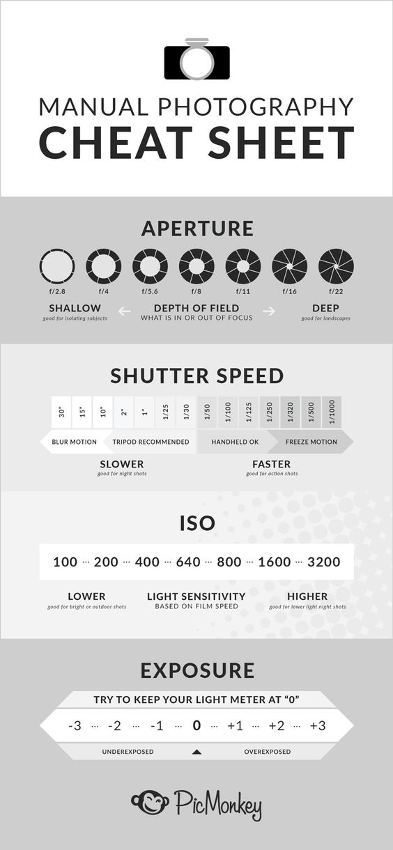 Your ultimate photography cheat sheet guide. Complete with info about aperture and how it relates to depth of field, shutter speed, ISO, and exposure. All the essentials.