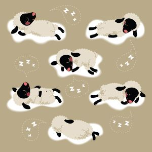 The NON-traditional and REALLY IRRITATING sleep visualization . . . NOTE: this illustration comes from an Aromatics & Energy site -- and I can testify to the helpful ness of aromatherapy -- lavender DEFINTELY helps me sleep! . . . Sheep sleep.