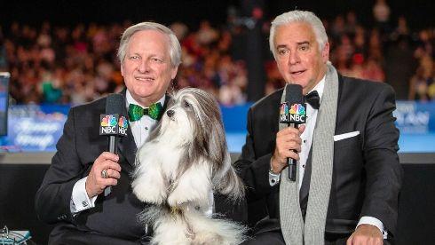 Dog Show Thanksgiving 2020 In 2020 National Dog Show Dog Show Black Cocker Spaniel