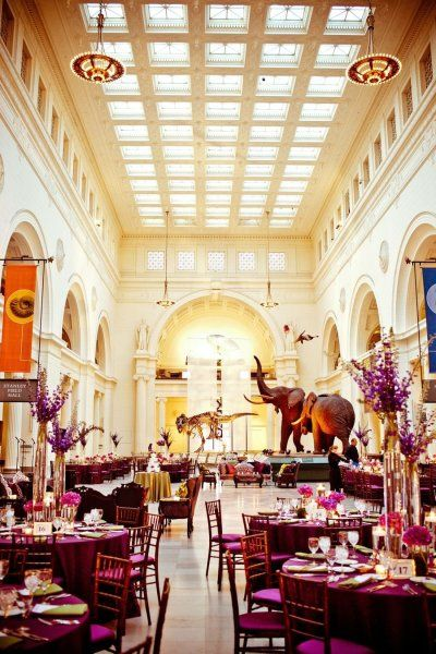 Field Museum Wedding, - Oh.....my......god. It is a thing. You can have your wedding at the BEST PLACE ON THE PLANET!!!!!:
