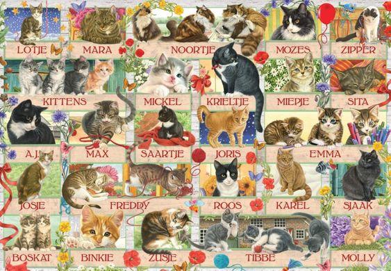 Francien Jubileumkatten legpuzzel 1000 stukjes van Jumbo ... puzzle, cat, kitten, kitty, francien