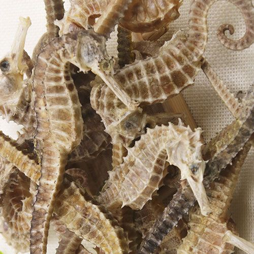 To Know About Some Popular Dry Seafood Click This Link Sale Seafood Dryseafood Online Seafoodonline Onlineshop Seahorse For Sale Seahorse Seafood Online