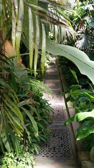 La estufa del Jardín Botánico