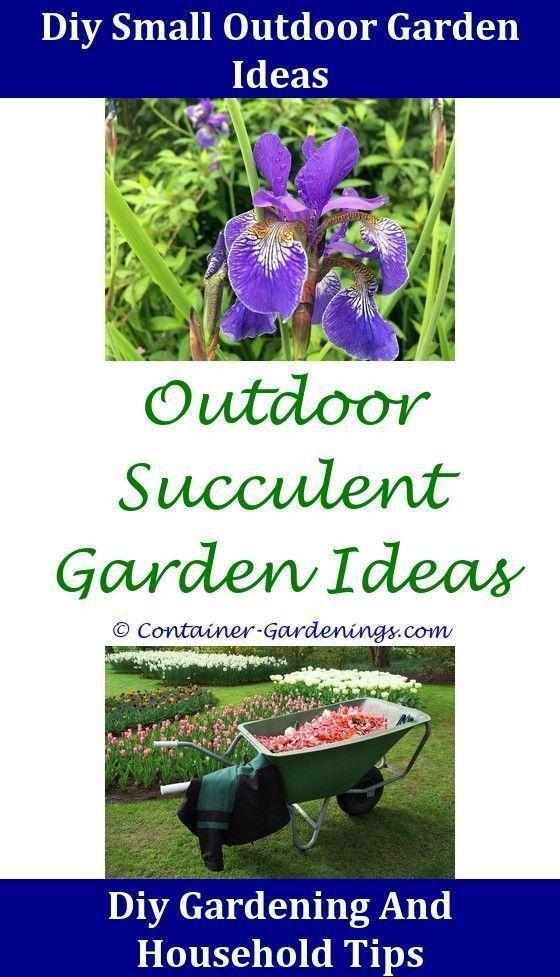 Gargen Diy Flower Garden Ideas Indoor Patio Garden Ideas