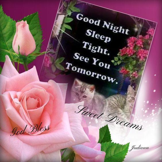 Sleep Tight See You Tomorrow Good Night Good Night Quotes Good Night Images Good Night Greetings Good Night Greetings Good Night Image Good Night Blessings