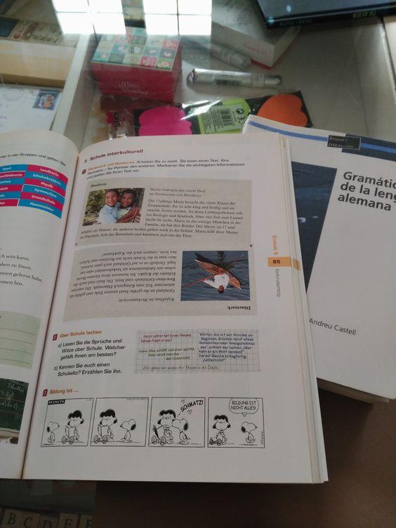 11:00 h: Preparación de clases