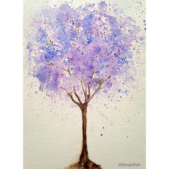 Jacarandá mimoso, árvore 13, aquarela /Mimosifolia Tree 13, watercolor 21x15cm #40treesproject Adriana Galindo