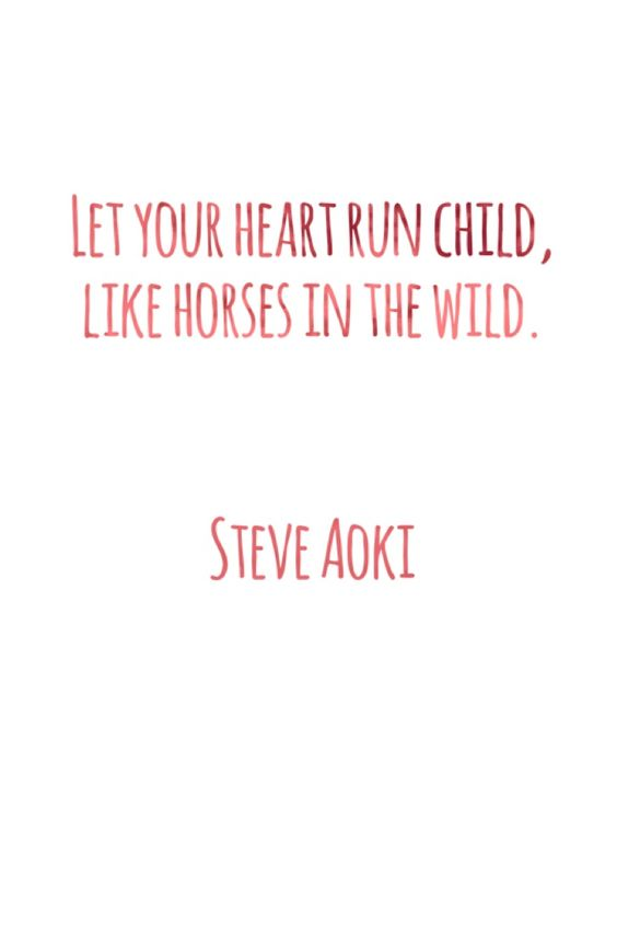 2016/02/11 Let your heart run child, like horses in the wild. (Home We'll Go, Steve Aoki)