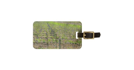 Vineyard in Napa Valley California Bag Tag #luggagetags #wine #vineyard #grapes #napa #gifts