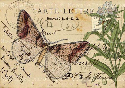 vintage collage postale, roses - Pesquisa Google: