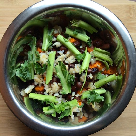 vegan dog food dog food and dog food recipes on pinterest