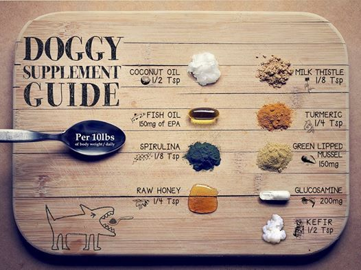 supplement guide for dogs