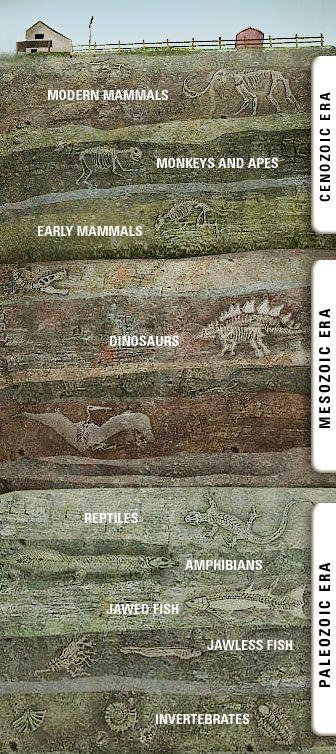 Geological Timeline #1