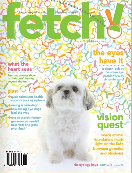 The Eye Spy issue of fetch! magazine from Petplan #pet-insurance takes a closer look at eye problems in pets, with insightful pet health advice, a link between genetics and blindness, a focus on seeing eye dogs, and an interview with former PA governor Ed Rendell!