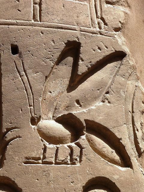 Bee hieroglyph, Karnak temple Egypt.  #temple #history #ancientegyptians