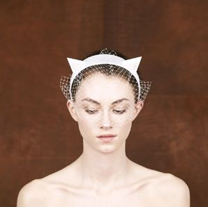 Cat ears! by Piers Atkinson