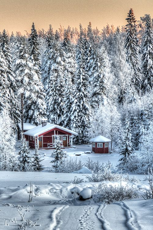 Cabin in snow, Finland: