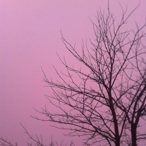 #RadiantOrchid skies ahead. Colorful capture by @mattfielding96 #2014 #coloroftheyear