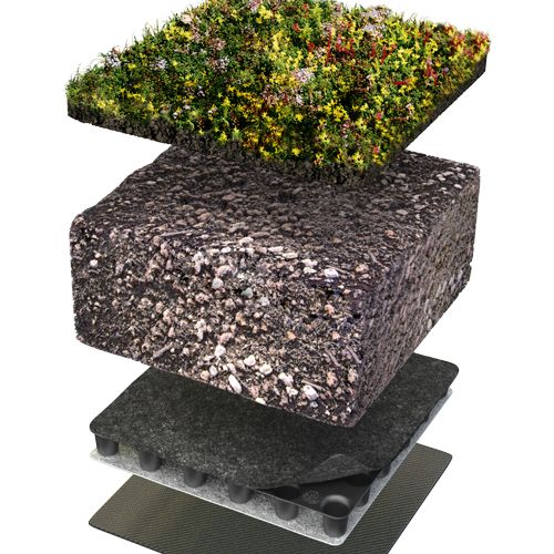 Grønne tak; Bjørvika