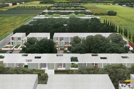 housing dogma collage
