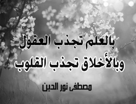 خلفية ورد بالعلم تجذب العقول Arabic Calligraphy Calligraphy Art