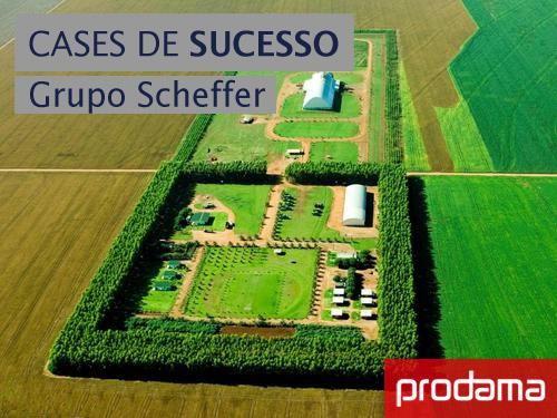 Cases de Sucesso - Grupo Scheffer. #prodama #solucoes #tecnologia #ERP