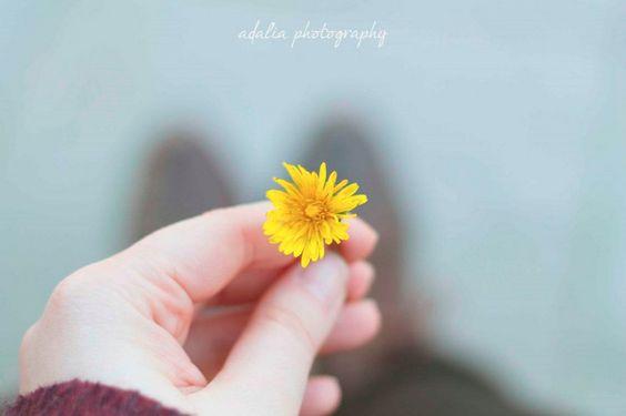 Quiero Hacer Fotos Bonitas: Puntos de vista | milowcostblog