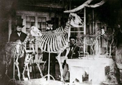 Edgar Allan Poe lurks at right in this early daguerreotype of the Academy of Natural Sciences in Philadelphia, 1842/3