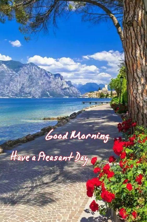 Sailorgiannis Sailor55621898 Twitter Good Morning Images Lovely Good Morning Images Good Morning Images Flowers