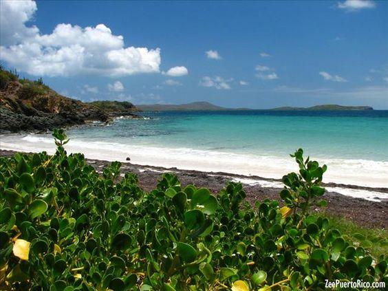 Playa Escondida de Vieques - VIEQUES