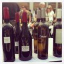 Nuestros vinos orgánicos favoritos http://www.vinetur.com/fotos/organicwineco/nuestros-vinos-organicos-favoritos/cc-photos.html#photoid=1291