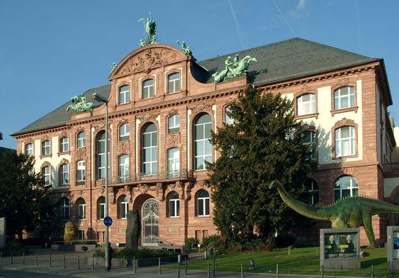 Франкфурт. Музей Зенкенберг.