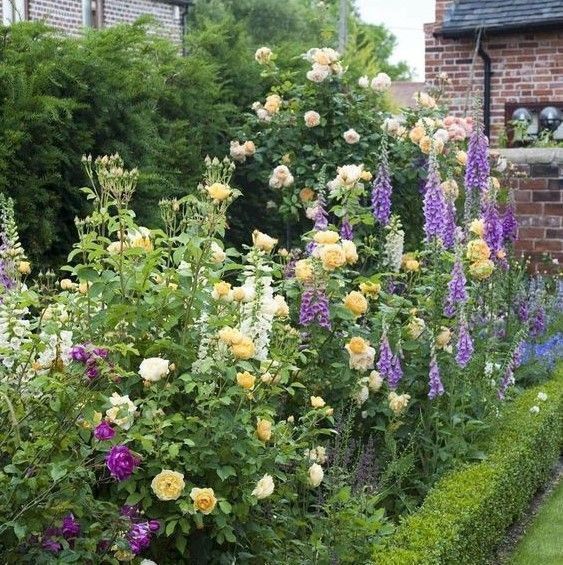 Roses In A Mixed Cottage Garden Bed Love The Blend Of Colors Garden Flower Beds Tall Flowers Rose Garden Landscape
