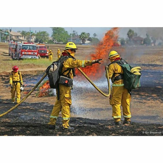 FEATURED POST  @fire_images -  Riverside County (CA) volunteer firefighter wildland fire training. .  ___Want to be featured? _____ Use #chiefmiller in your post ... http://ift.tt/2aftxS9 . CHECK OUT! Facebook- chiefmiller1 Periscope -chief_miller Tumblr- chief-miller Twitter - chief_miller YouTube- chief miller .  #firetruck #firedepartment #fireman #firefighters #ems #kcco  #brotherhood #firefighting #paramedic #firehouse #rescue #firedept  #chiver #feuerwehr  #brandweer #pompier #medic…