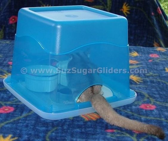 Glider Kitchen helps to keep the enclosure cleaner longer