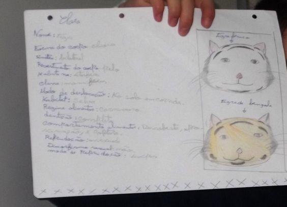 O 5.º ano, nas férias de Natal, elaborou um cartão de cidadão para o seu animal preferido.