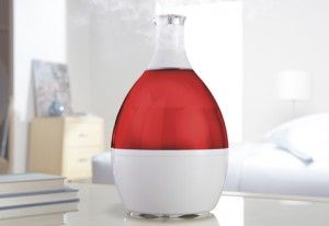 Fabulous weapon to fight dry skin - humidifier that looks like a vase!  See my website for more tips!