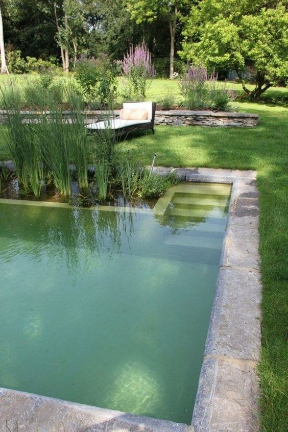 Striking Natural Swimming Pool Ideas You Have To Steal Decortrendy Small Pool Design Pool Landscaping Natural Swimming Ponds
