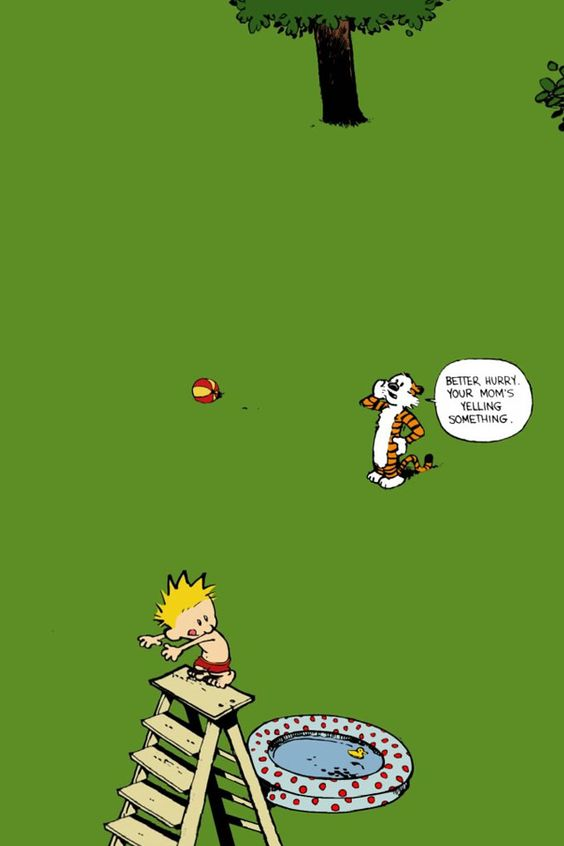 Calvin and Hobbes. I miss this comic...used to have 3 of their books. Best funny comic books ever!