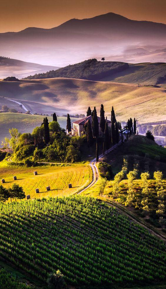 Tiro hermoso del paisaje de Toscana, Italia: