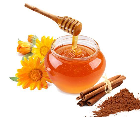 listings joelle cinnamon asian