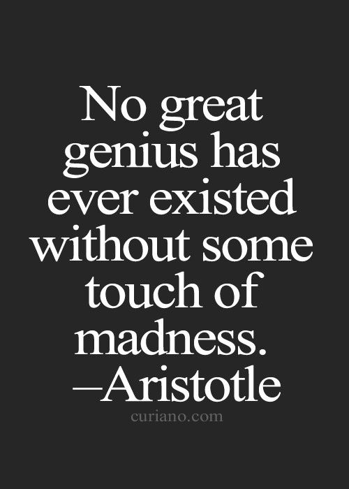 """No great genius has ever existed without some touch of madness."" Aristotle quote"