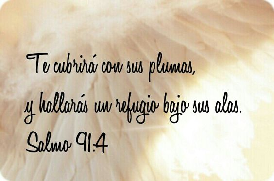 Salmo 91:4