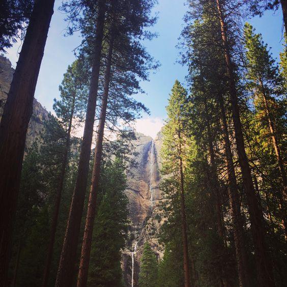Upper Yosemite Falls in early July