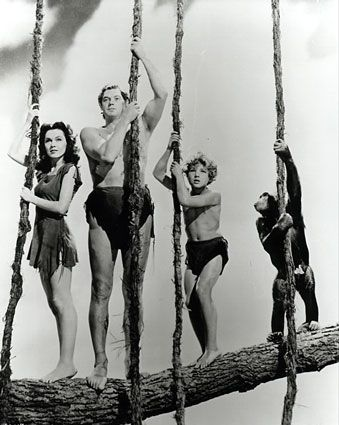 The one and only Tarzan. They used Mr Weismuller's call for every Tarzan that came after !