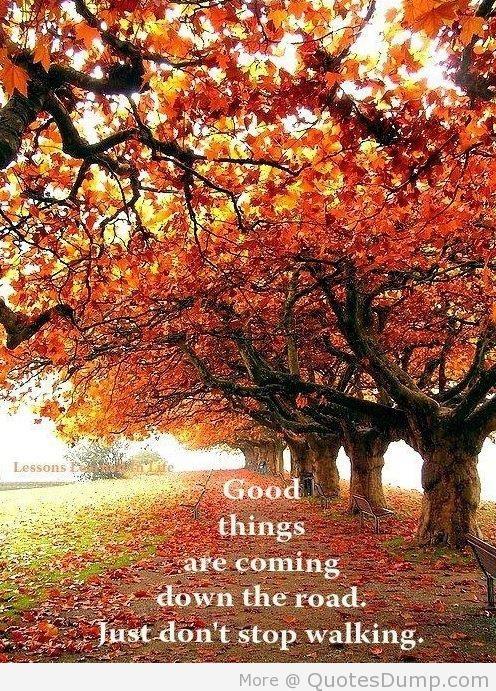 Bildresultat för autumn citat