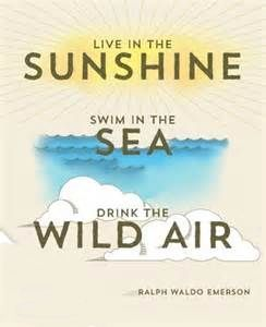 Live in the Sunshine...Swim in the Sea...Drink the Wild Air