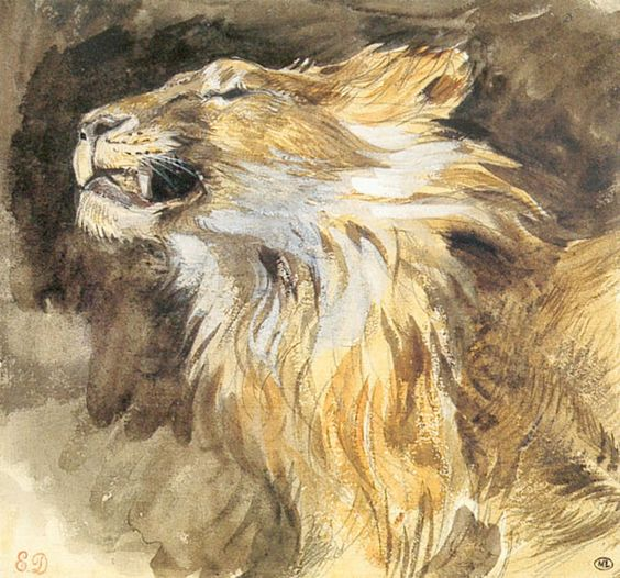 Etude de tête de lion - Eugène Delacroix aquarelle