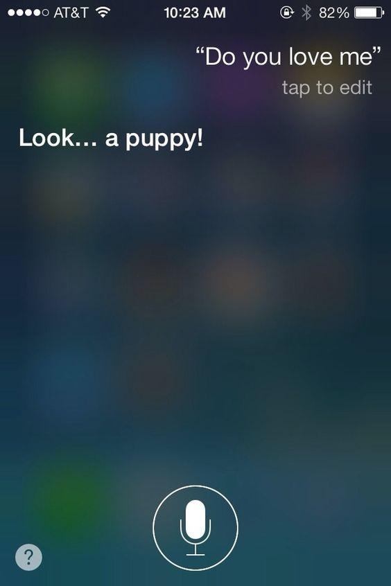 78fe3363f81df639ad3393ed91a4e484  siri questions hilarious siri funny - How Do I Get Siri To Say What I Type